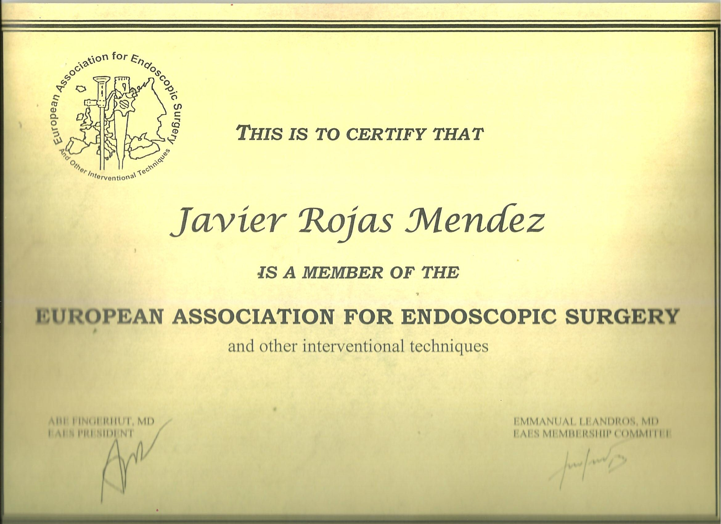 European Association Endoscopic Surgery